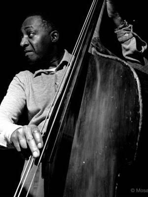 Cello & Double Bass